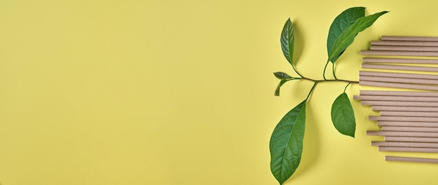 Rurki do picia wykonane z papieru i skrobi kukurydzianej, biodegradowalnego materiału i ekologicznych papierowych szklanek z zielonymi liśćmi kiełków w żółtym kolorze trendu 2021 koncepcja zero waste i plastik. widok z góry.