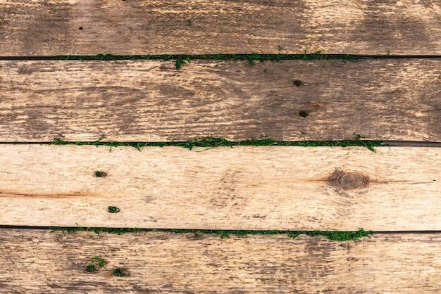 Rustykalne drewniane tło z surowych desek z zielonym mchem między deskami