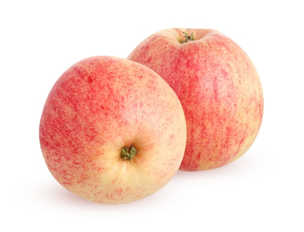 Rustykalne jabłka ogrodowe na białym tle. dwa całe owoce z cieniem.