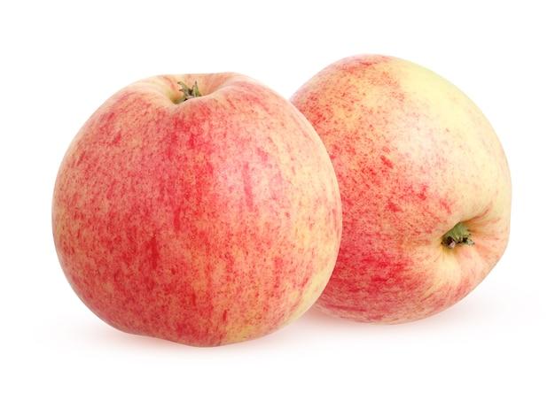 Rustykalne jabłka ogrodowe na białym tle na białym tle ze ścieżką przycinającą. dwa całe owoce.