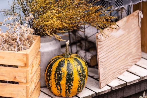 Rustykalny jesienny wystrój na białym tle drewna