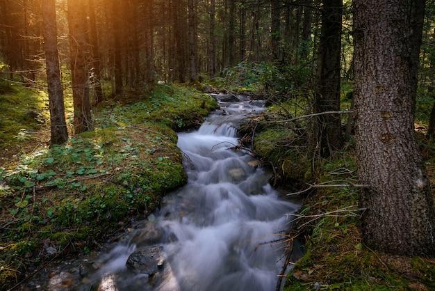 Rwący strumień wody między brzegami porośnięty zieloną trawą i mchem