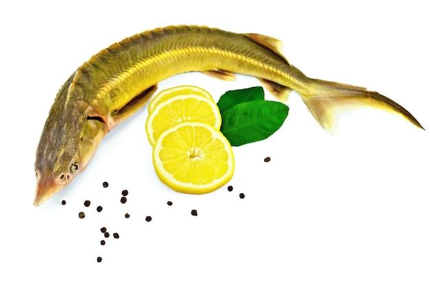 Ryba jesiotrowa z cytryną, pieprzem i zielonymi liśćmi cytryny dwa na białym tle