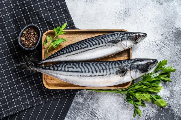 Ryba makrela z natką pietruszki i pieprzem. świeże owoce morza. widok z góry
