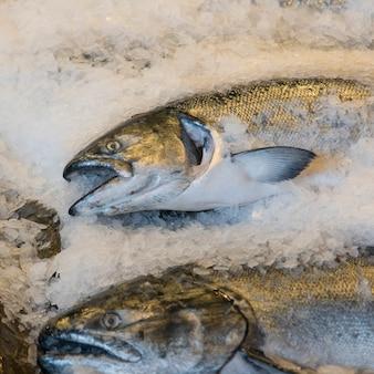 Ryba na lodzie dla sprzedaży przy szczupaka miejsca rynkiem, seattle, stan washington, usa