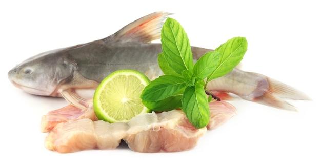 Ryba rita z azji południowej z miętą i cytryną