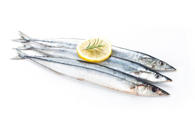 Ryba saury