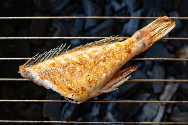 Ryba smażony świeży grill grill posiłek grill
