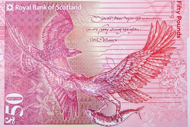 Rybołów portret ze szkockich pieniędzy