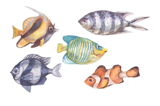 Ryby podwodne morze ocean korale algi muszle akwarela ręcznie rysowane ilustracja
