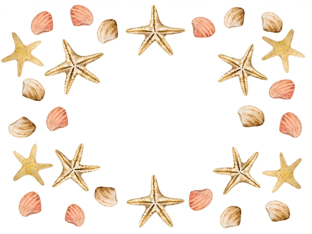 Rysowanie rozgwiazdy i muszli. piękna karta.