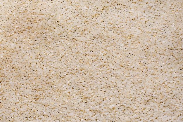 Ryż sucha karma z bliska, tekstura. organiczny biały ryż. tło.