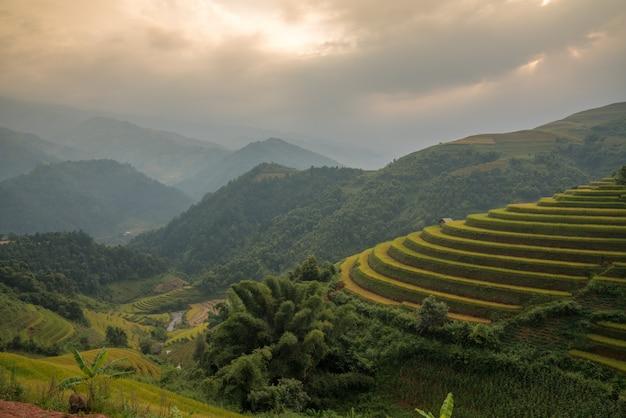 Ryżowy zieleni pola punkt zwrotny przy wietnam