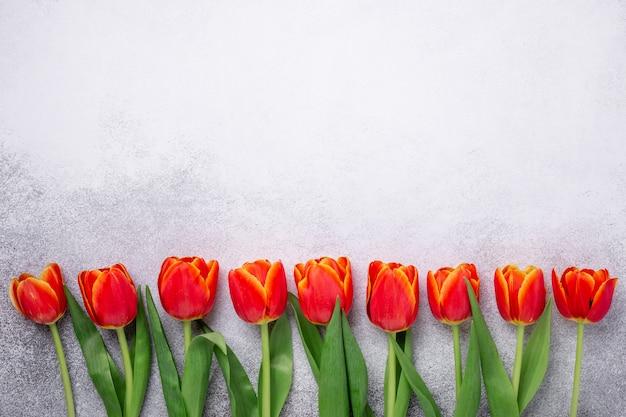 Rząd czerwoni tulipany na świetle dryluje tło. kreatywne mieszkanie leżało. widok z góry. skopiuj miejsce