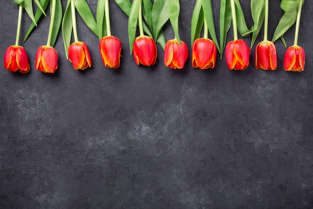 Rząd czerwoni tulipany na zmroku dryluje tło. kreatywne mieszkanie leżało