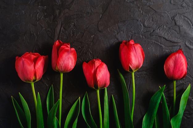Rząd tulipanowi kwiaty na textured czarnym tle, odgórnego widoku kopii przestrzeń