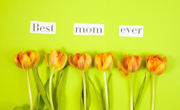 Rząd tulipany na coloful tle z przestrzenią dla wiadomości. tło dnia matki. widok z góry