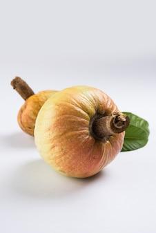 Rzadki owoc leczniczy ramphal lub ram fal znany również jako annona reticulate lub soursop w języku angielskim, na nastrojowym tle, selektywne skupienie