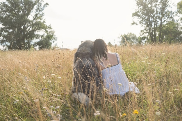 Rzadki widok kaukaski blond kobieta w białej sukni, przytulanie psa alaskan malamute w lato polu. miłość i przyjaźń między człowiekiem a zwierzęciem.