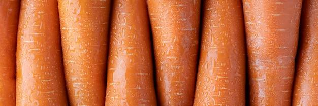 Rzędy marchwi, pomarańczowe tło pionowe. wegetariańskie jedzenie lecznicze. długi układ.