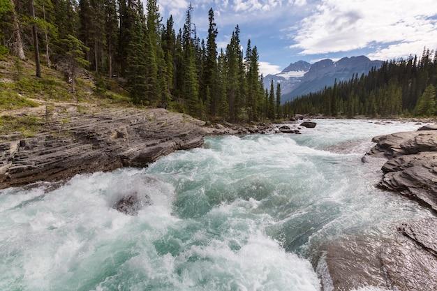 Rzeka Athabasca W Parku Narodowym Jasper Premium Zdjęcia