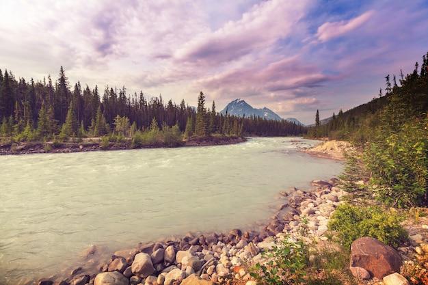 Rzeka athabasca w parku narodowym jasper