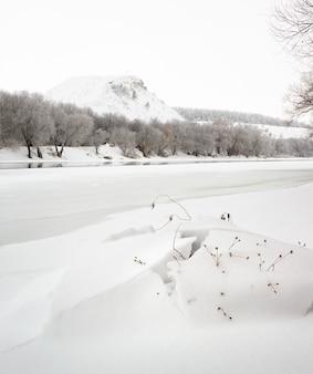 Rzeka don pokryta jest lodem. zimowy krajobraz w rosji.