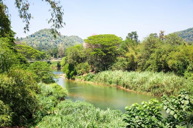 Rzeka dżungla i runo tropikalne na sri lance. krajobraz cejlonu