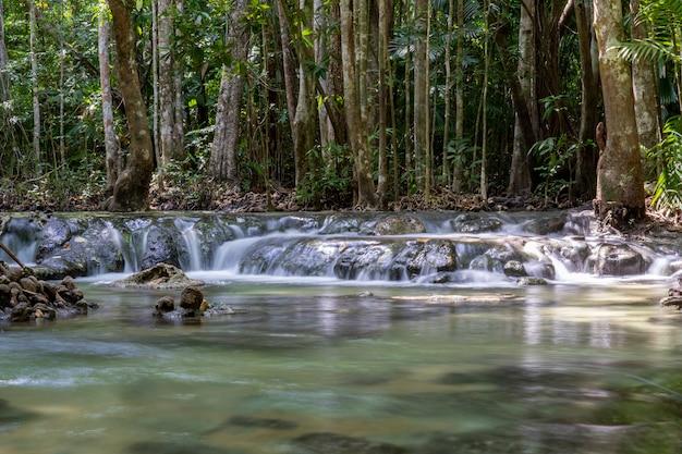 Rzeka głęboko w górskim lesie. kompozycja przyrodnicza