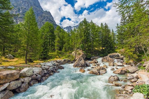 Rzeka górska rush