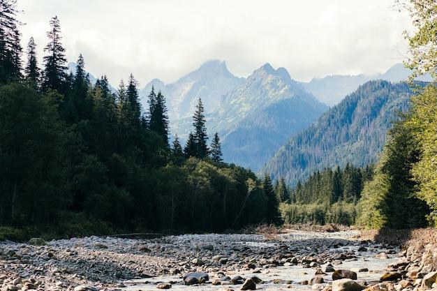 Rzeka i góry, morskie oko, polska, zakopane