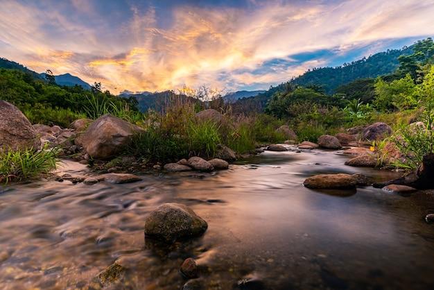 Rzeka kamień i drzewo z niebem i chmurą kolorowe, widok drzewa rzeki wody, rzeka stone i liść drzewa w lesie