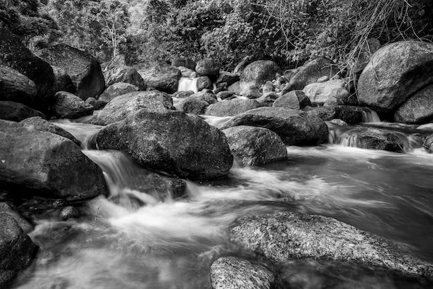 Rzeka kamień i siklawa, widok wodny rzeczny drzewo