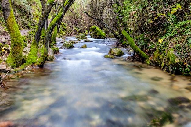 Rzeka majaceite