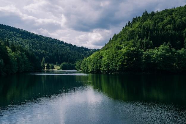 Rzeka otoczona lasami pod zachmurzonym niebem w turyngii w niemczech - doskonała do koncepcji przyrodniczych