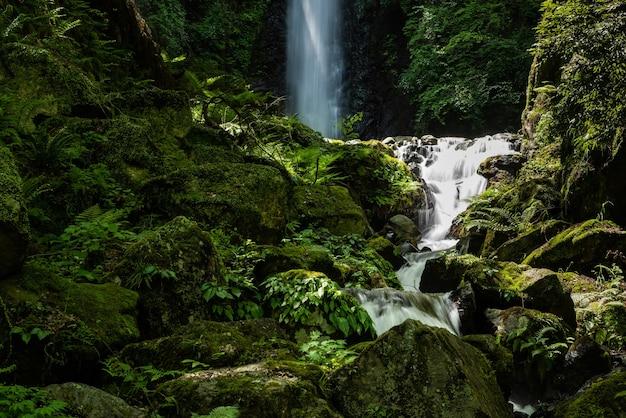 Rzeka płynąca między skałami i zieloną roślinnością, wodospad w tle. japonia.