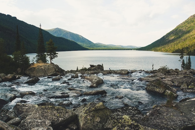 Rzeka płynie z ogromnym kamieniem. rzeka wpada do jeziora multinskoe. hałas między dwoma jeziorami. ałtaj rosja