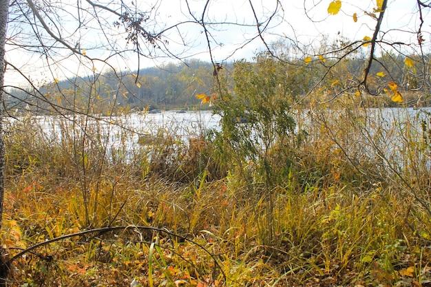 Rzeka południowy bug na ukrainie jesienią