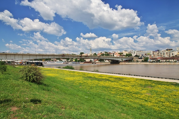 Rzeka sava w belgradzie, serbia