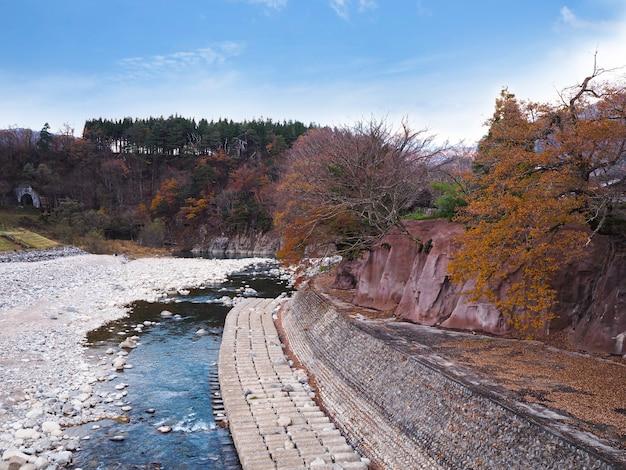 Rzeka shogawa w japońskiej wiosce shirakawa-go jesienią