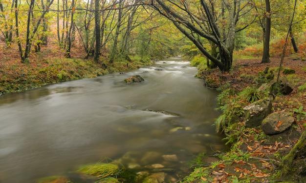Rzeka tamuxe w galicji. naturalny krajobraz