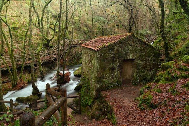 Rzeka valga to rzeka prowincji pontevedra, galicja, hiszpania.
