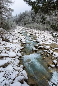 Rzeka w górach. górzysty teren. wodospady w górach w lesie, zimowy krajobraz górskich rzek