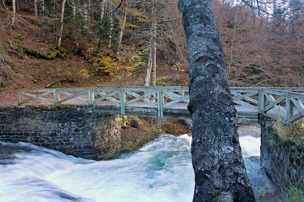 Rzeka w ordesa national park, pireneje, huesca, aragonia, hiszpania