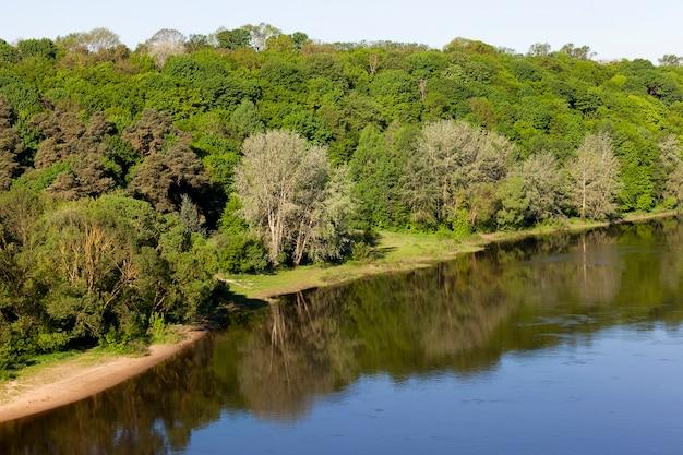 Rzeka z brudną wodą przepływająca przez las mieszany