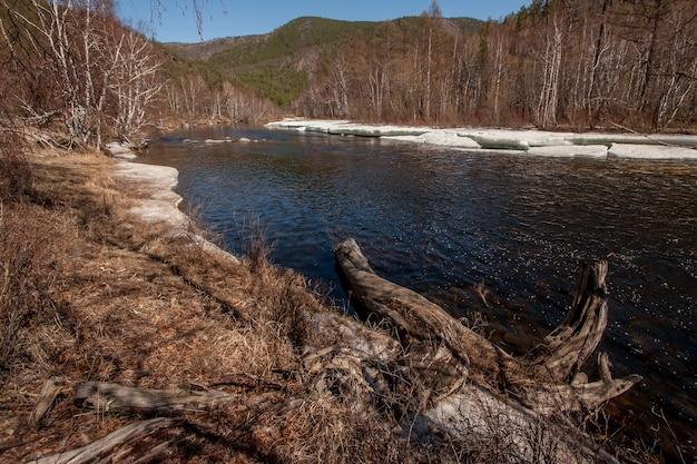 Rzeka z lodem na wiosnę wśród wzgórz. rzeka z lodem na wiosnę. na pierwszym planie kłoda lub szkopuł, uschnięta trawa. w tle są wzgórza.
