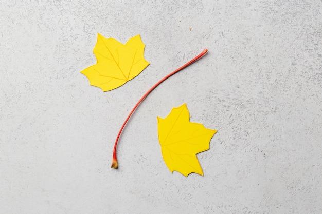 Rzemiosło papierowe jesienne liście znak koncepcji jesiennej sprzedaży rabatu. wysokiej jakości zdjęcie