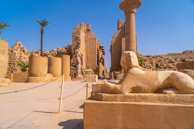 Rzeźba faraona z ciałem lwa wewnątrz świątyni w karnaku. egipt