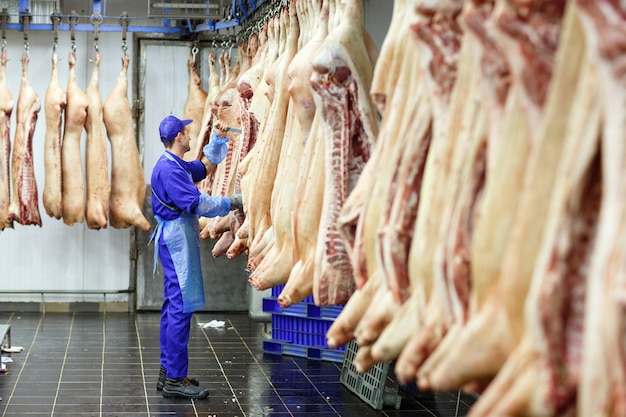 Rzeźnik cięcia wieprzowiny w produkcji mięsa.