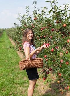 Sad jabłkowy kobieta